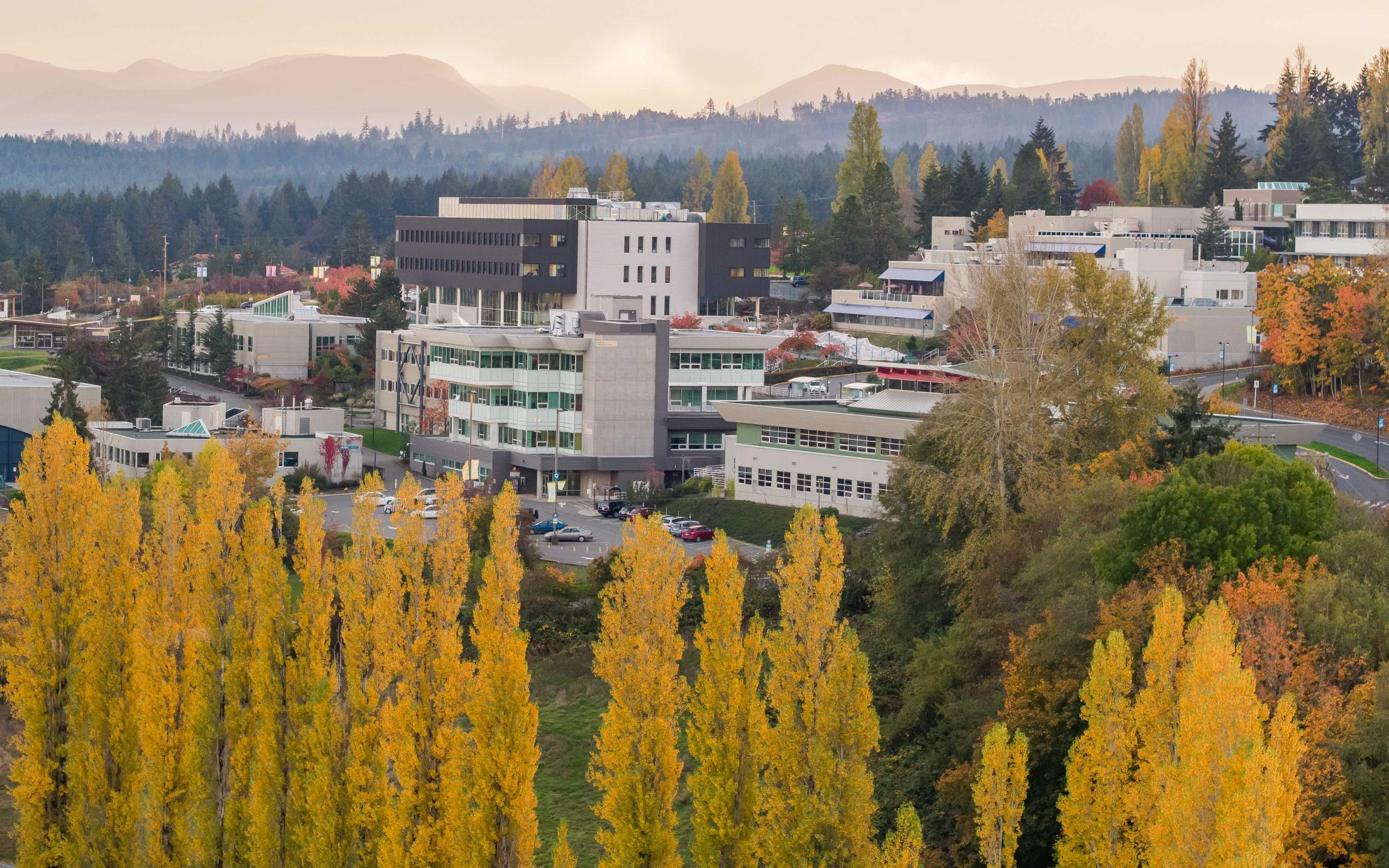 Aerial view of VIU campus